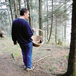 «Corsi di formazione   per chi va nel bosco»