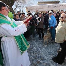 Piccola folla alla festa di Sant'Antonio a Montagna