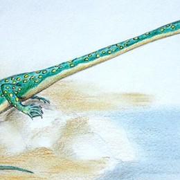 Il Tanistrofeo, il più strano animale preistorico viveva in Lombardia