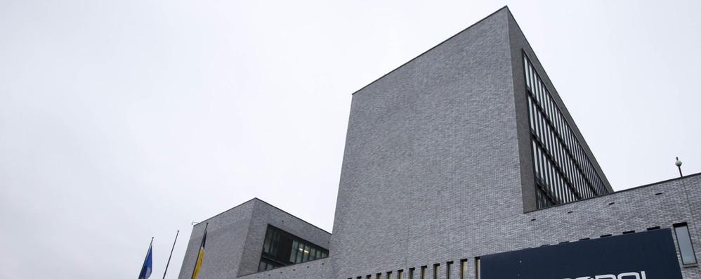 Maxi operazione Europol contro alimenti contraffatti