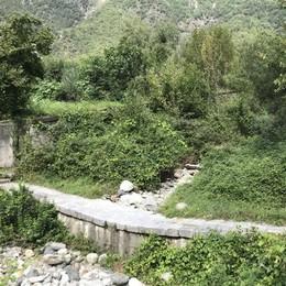 Valle Pluviosa, sorvegliata speciale  Briglia colma e vegetazione ovunque