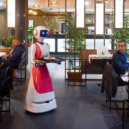 Il sushi del futuro viaggia su rotelle  Lo servono quattro robot camerieri   Guarda il video