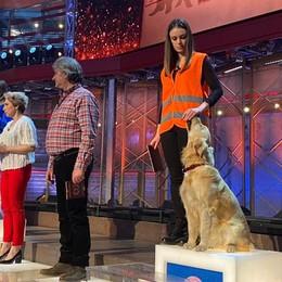Arianna e Joy alla Rai  In tv la cagnolina   che differenzia i rifiuti