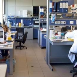 Coronavirus: l'Istituto Negri   «Ormai superato il picco»