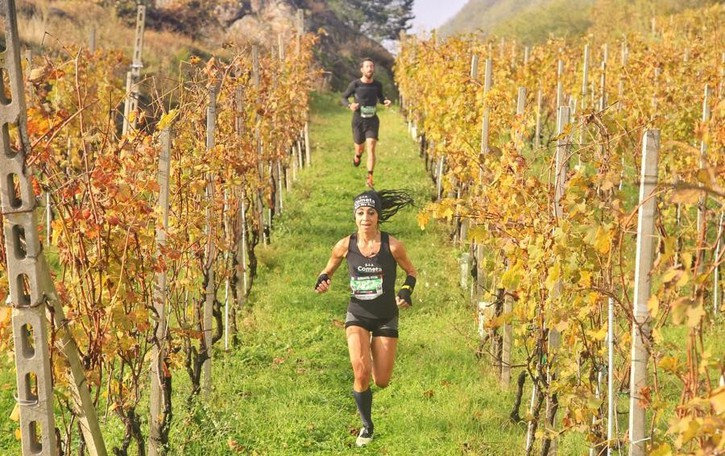 Wine Trail da sogno  Sbarca nel Vaticano