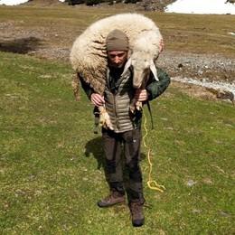 «Curiamo le pecore  e vogliamo salvarle  Non siamo sciacalli»